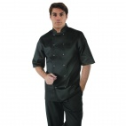 A439-XS Vegas Chefs Jacket (Short Sleeve) - Black