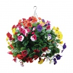 "CG575 22"" Mixed Colours Pansy Ball"