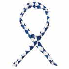 A266 Neckerchief - Big Blue and White Check